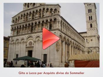 Gita a Lucca per Acquisto divise da Sommelier